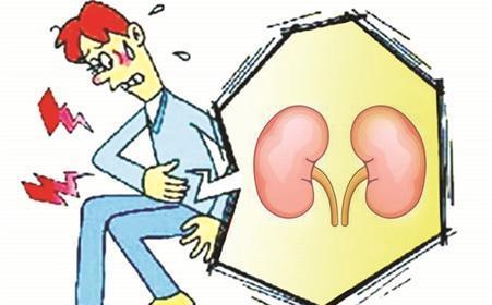 关爱肾脏-尿检智能马桶