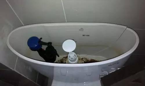 智能马桶水箱开裂是什么原因造成的?